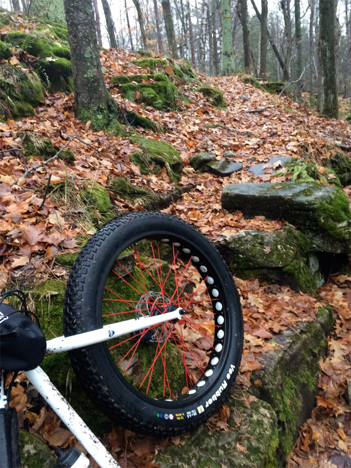 Vee Rubber Fat Tire